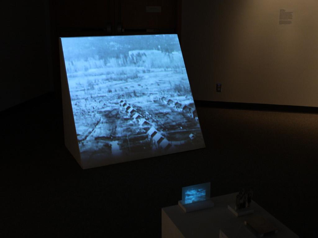Cindy Mochizuki, Panorama Series I, 2012